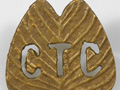 Camel Transport Corps badge