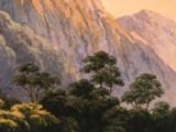 Exploring New Zealand's interior