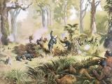 New Zealand's 19th-century wars