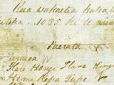 He Whakaputanga - Declaration of Independence