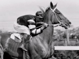 Death of Phar Lap
