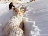 Canterbury's 'Big Snow'