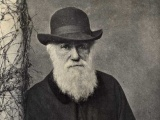 Charles Darwin leaves New Zealand after nine-day visit