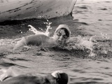 First woman swims Cook Strait