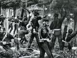 Beginning of Tītokowaru's war
