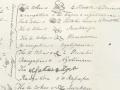 Herald Bunbury treaty copy