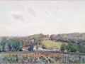 Poppy field, village of Pas, Somme 1918