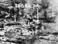 Aerial reconnaissance photo, 1918
