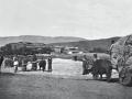 Armenian village, 1901