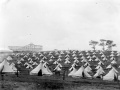 Mounted special constables' camp, Auckland Domain, 1913
