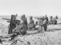 Camel artillery ready to fire
