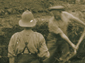 Digging in on Walker's Ridge