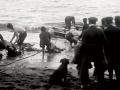 SS <em>Penguin</em> wrecked in Cook Strait