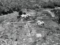 Kopuawhara flood kills 21