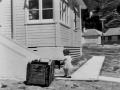 Film clip: Hutt housing - a new home