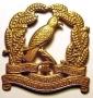4th (Waikato) Mounted Rifles squadron