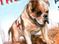 Caesar, the Anzac dog