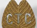 Camel Transport Corps badge