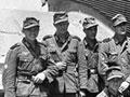 German mountain troops