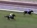 Ethereal wins the 2001 Melbourne Cup