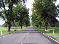 Fairlie Peace Avenue