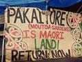 Moutoa Gardens protest