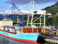 Port Chalmers, 2006