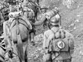 Serbian mountain artillery