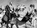 Mounted Arab troops