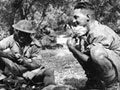 Soldiers shelter amongst olive trees on Crete