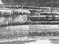 The White Terraces