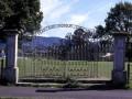 Te Puke war memorial