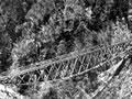 Chasm Creek suspension bridge