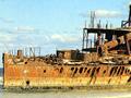 The <em>Maheno</em> wreck on Fraser Island