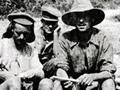 Gallipoli mail day