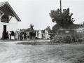 Manurewa memorial trees