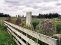 Moturoa NZ Wars memorial