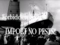 Forbidden fruit! Department of Agriculture film, 1950s