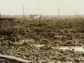 Battle scene near Passchendaele