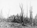 Ruins of Polderhoek Chateau, 1917