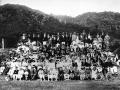 The staff picnic