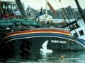 Sound clip: sinking of the Rainbow Warrior