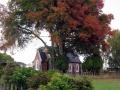 St Luke's church and memorial oak, Waerenga-a-hika
