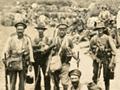 Wellington Mounted Rifles on Gallipoli