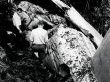 DC-3 crashes in Kaimai Range