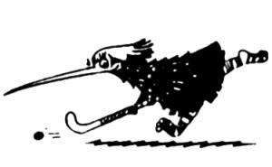 Kiwi holding a hockey stick chasing a ball